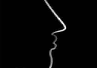 The Profile, by Polina Marinova Pompliano